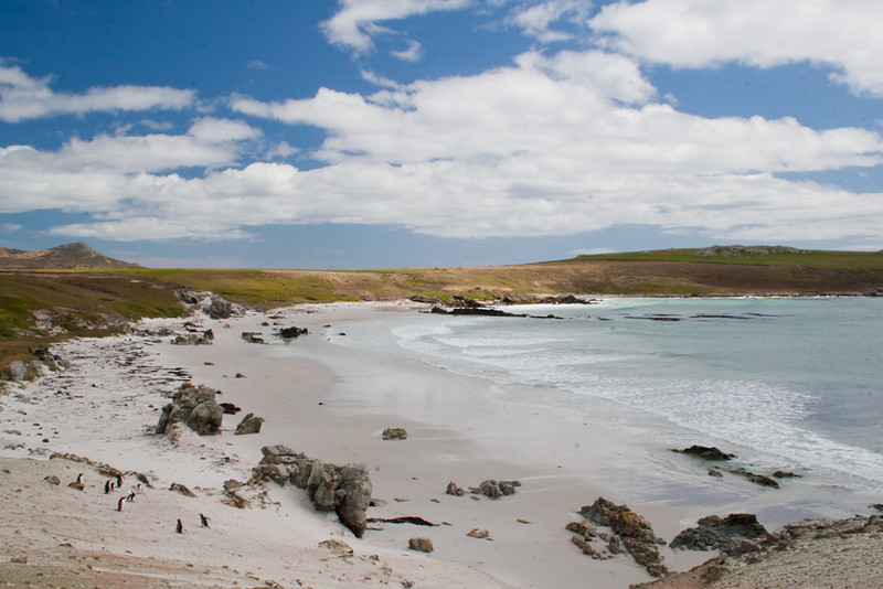 Green Rincon Bay, Pebble Island, Falkland Islands / Islas Malvinas