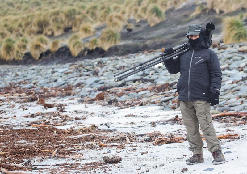 Photographing wildlife at Carcass Island, Falklands Islands / Islas Malvinas