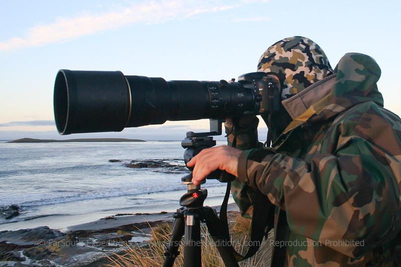 Guest Alex Macipe at action, Sea Lion Island, Falkland Islands / Islas Malvinas