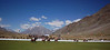 Polo field surrounded by mountains