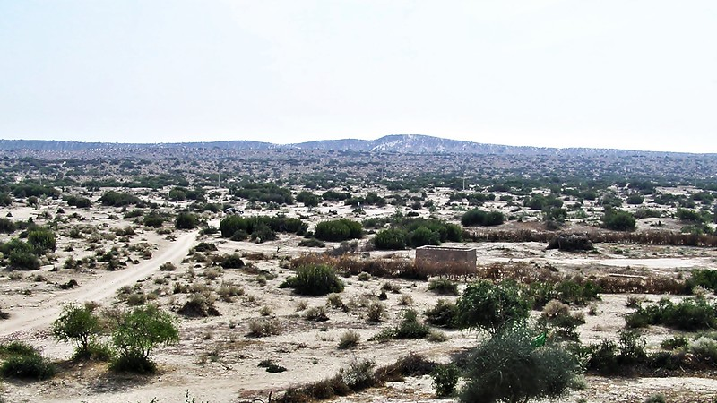 Fort in Naukot