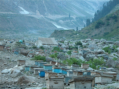 Bee Keepers camp along the stream in Naran, Pakistan.