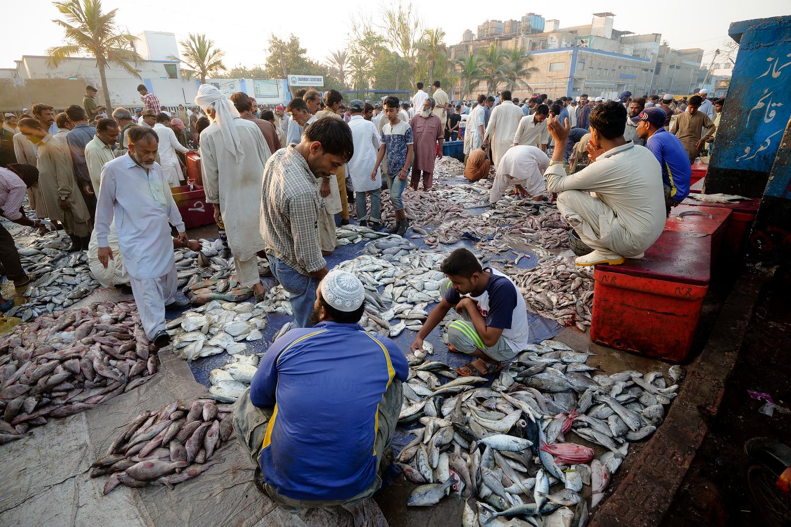 卡拉奇,巴基斯坦