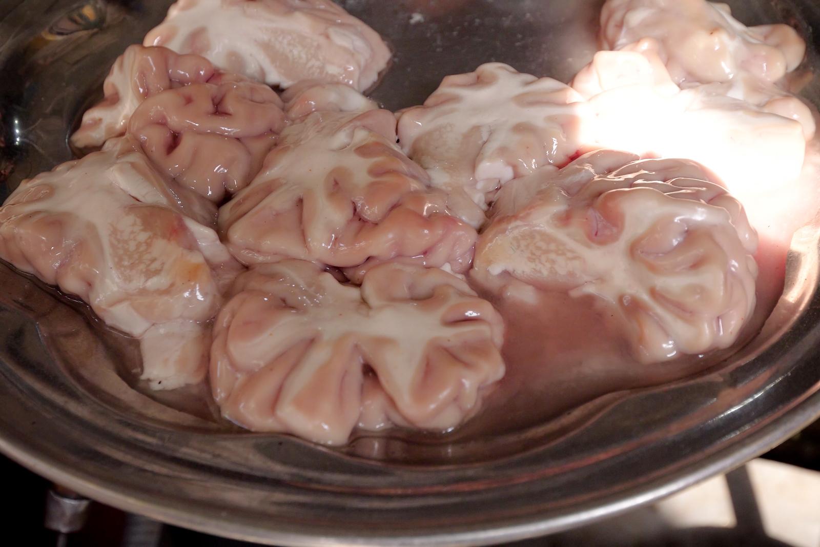 brain masala