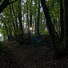 Hollow way near Spirkelbach I