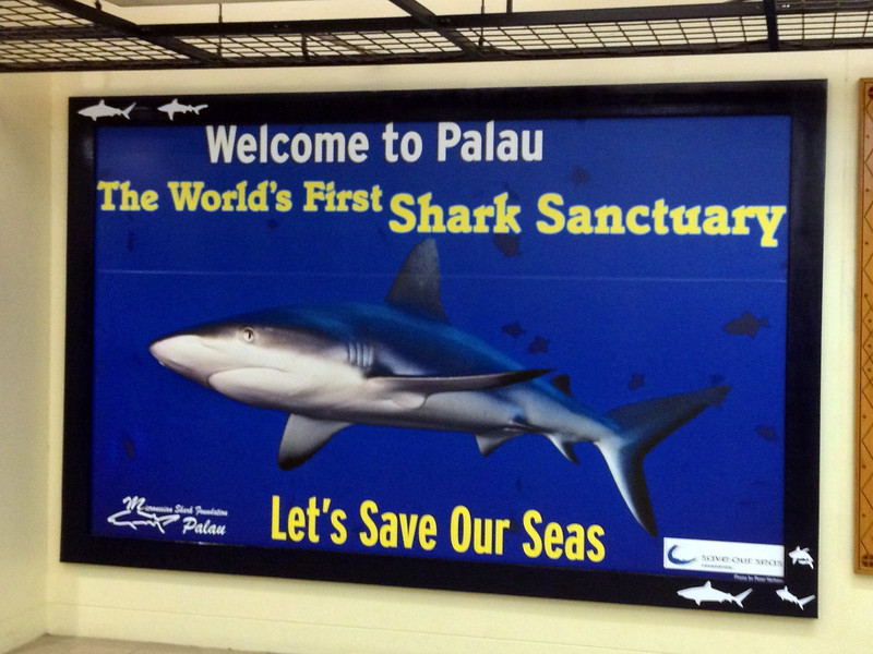 Immigration Billboard - Palau