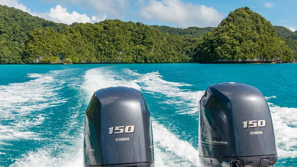 Palau Snorkelling Tour