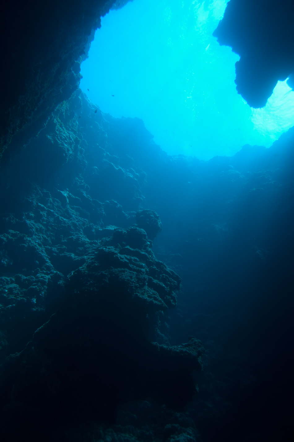 The huge underwater caves of Blue Holes, Palau