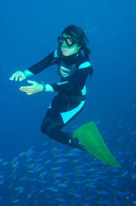 Ai Futaki freedives at Blue Corner, Palau amongst the sharks and fishes