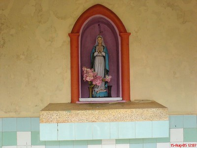 Mother Mary in our Church in my village, St. John's Church Palavayal