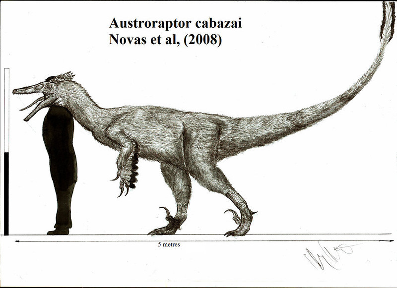 austroraptor, cabazai, teratophoneus