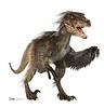 10__ Velociraptor
