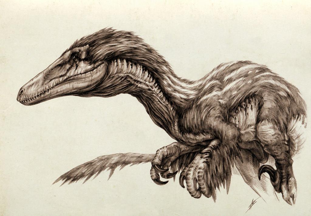 austroraptor, dyingquasar