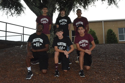 Palestine boys cross country team