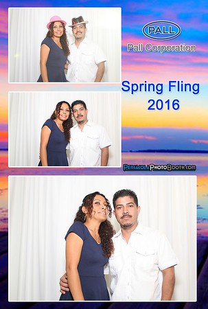 Pall Corporation Spring Fling 5-14-2016