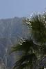 Palm springs tram (3)
