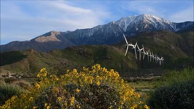 Palm Springs Wind Mills Video