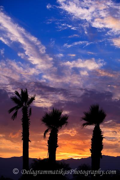 20101017_Rancho Mirage_0184