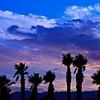 20101017_Rancho Mirage_0178
