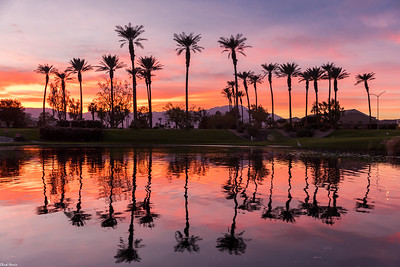 Chuck Harris Palm Desert-Del Webb.