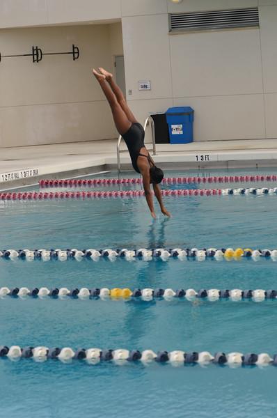 Swim and Dive Team