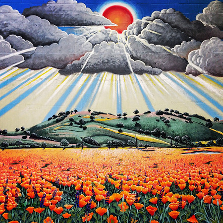 Poppy mural on Country Sun Natural Market - Palo Alto