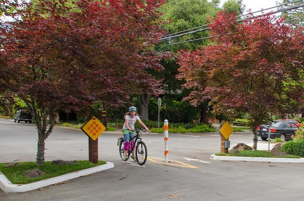 Palo Alto Bike Boulevard