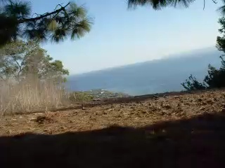 This is a first attempt at using my Nikon Coolpix mounted to the handle bars of my Mountain bike. The ride is in the Portugese Nature reserve in Palos Verdes and this is the Eagles Nest trail. Unfortunately the memory on the camera only lasts about 2.5 minutes so it stops before the end of the ride but I was almost at the bottom. Its a bit bumpy and shaky but that's the nature of the trail with its rocks and bumps. The views are spectacular though one needs to watch the path not the view when riding down, have to watch out for the odd rattle snake too!