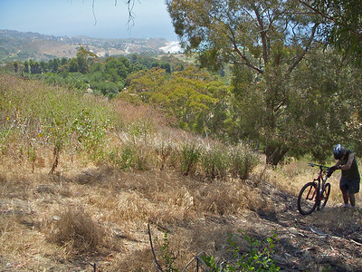 We had to push our bikes up the Ford Trail, pretty tiring and very overgrown and hard to get thro at the top with overgrown Mustard. I ended up carrying my bike behind me and having to keep stopping to untangle weeds.