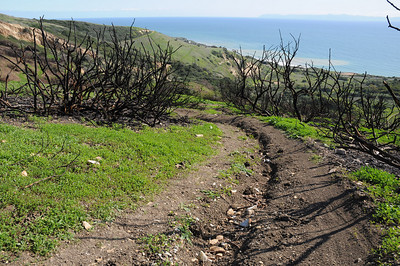 PV Trails Area after re-opening March 4th 2010