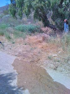 Water Leak spotted on Burma Trail