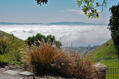 Nice shot from top of Crenshaw looking out over to Catalina Island with the fog bank over the ocean