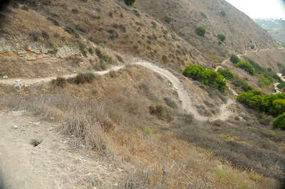 Rattlesnake trail in PV October 24th 2013