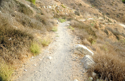 PV Trails 2013