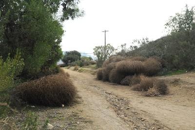 PV Trails after the rains Dec 20th 2014
