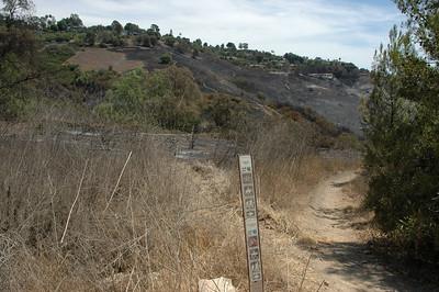 Start of the Ichi Scratchi trail