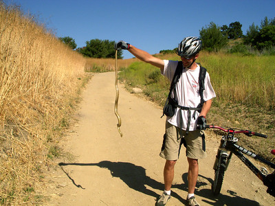 Magnus rescues a Gofer Snake from the main trail ands puts it back in the grass area
