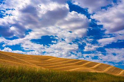 The Palouse Washington State