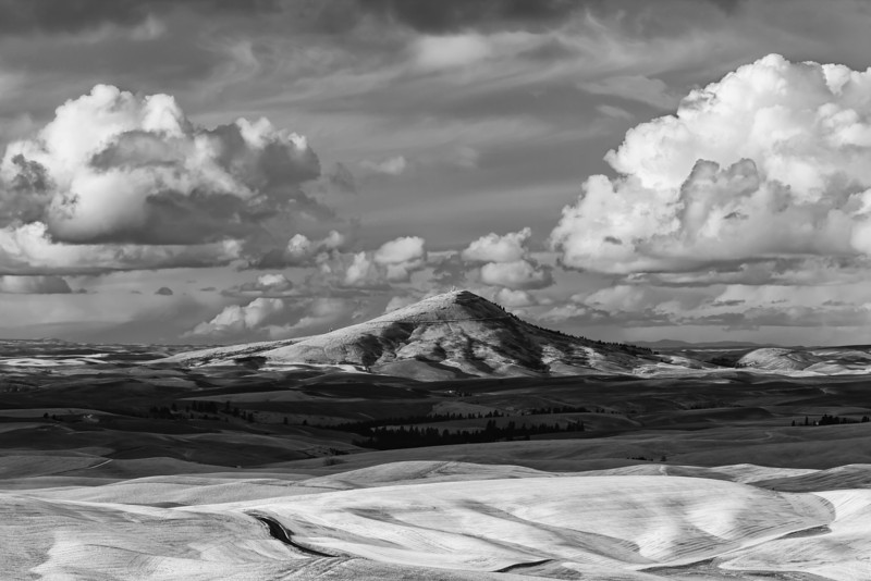 Steptoe Butte from Kamiak Butte.