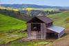 Barn and Canola, Idaho