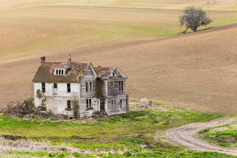 Abandoned House and Field