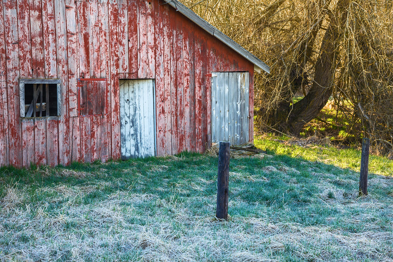 Old Red Homestead Barn, Cool Sunrise