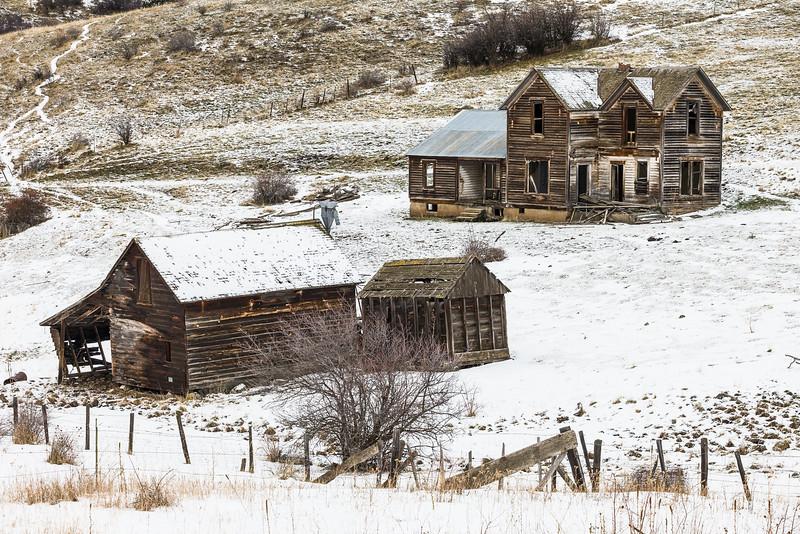 Abandoned House and Shed, Idaho