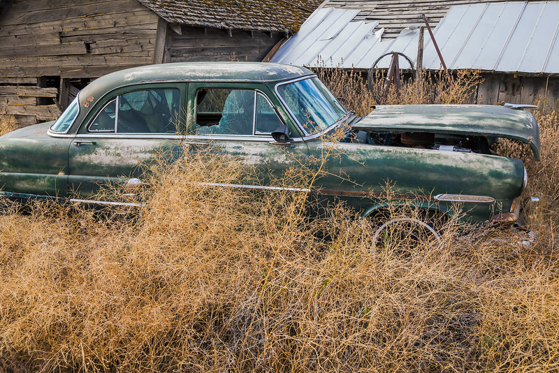 Ford Overdrive Overgrowth