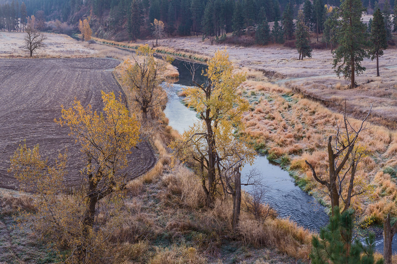 Touch of Autumn along the Palouse River