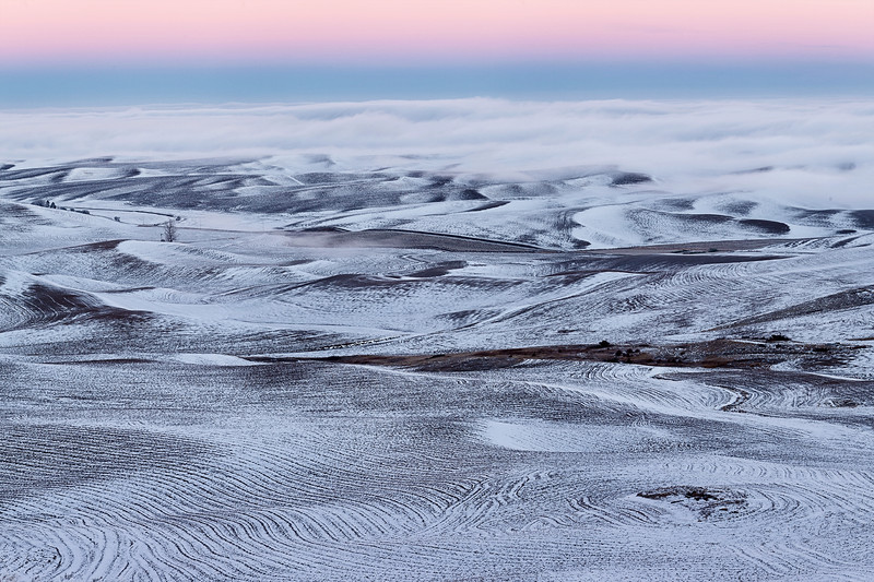 Twilight Arch and Fog over Wintry Palouse