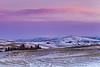 Pink Dawn, Winter