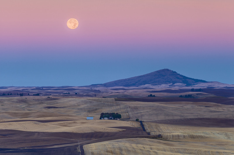 Harvest Moon at Sunrise
