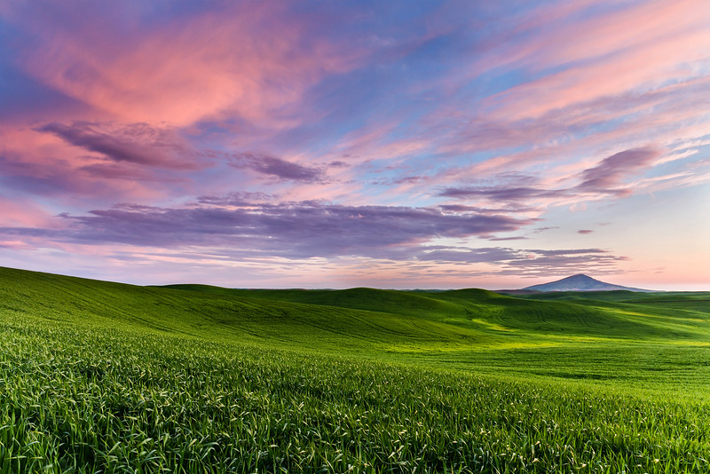 Steptoe Butte Sunset, Summer