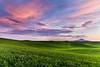Steptoe Butte Sunset, Summer